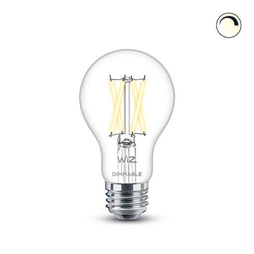 A19 Filament Dimmable Warm White