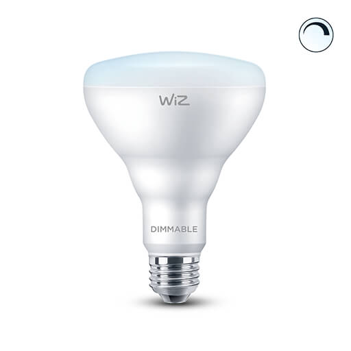 BR30 Dimmable Daylight