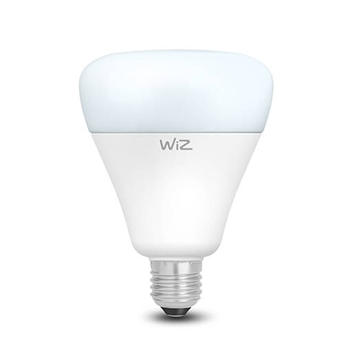 G100 Dimmable Daylight