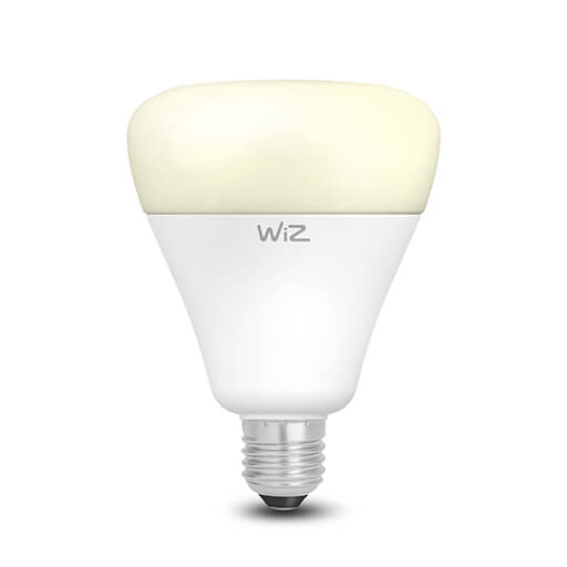 G100 Dimmable Warm White